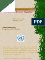 Apresentação Sobre Biorremediação (1)