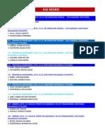 Rio Negro Listas Precandidatos PASO 2013