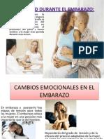 4. Exponer Sexualidad Humana Stany