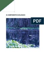 03 Componente Ecologico F