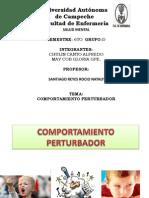 COMPORTAMIENTO PERTURBADOR