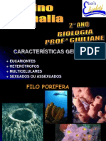 2º ANO - Reino Animal - Filos Porifera,Cnidarios, Platelmintos, Nematelmintos e Anelídeos