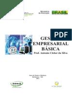 Gestão Empresarial Básica - Prof. Antonio Cleber da Silva.pdf