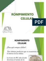 Presentacion Ruptura Celular.pptx (1)