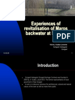 Csaba Voros -Revitalisation of Maros Backwater