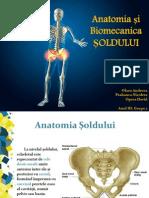 Anatomia Si Biomecanica SOLDULUI