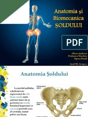 dureri la nivelul articulațiilor interfalangiene