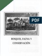 Bosque Fauna y Conservacion