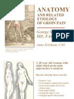anatomyrelatedetiologygroinpain-110210093733-phpapp02