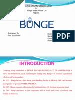 BungePPT 2.Pptx 00323