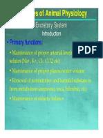 11 Animal Physiology - Excretory Systems