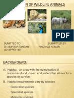 PROTECTION OF WILDLIFE ANIMALS.pptx