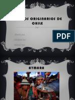Pueblos Autóctonos de Chile