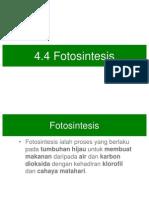 62491723-Sc-F2-C4-4-Fotosintesis