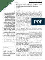 3.PropagacininvitrodePsidiumguajaba
