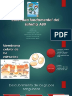 Estructura Fundamental Del Sistema AB0