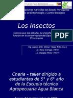 Los Insectos Charla Eta5y6