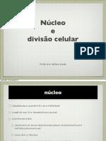 Divisão Celular 2014