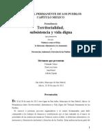 Dictamen Final Preaudiencia Territorialidad Subsistencia y Vida Digna