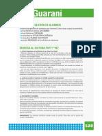 SIU GUARANI 2014.pdf