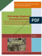 Estrategia Regional Forestal.pdf