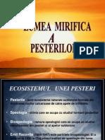 25860040 Ecosistemul Unei Pesteri