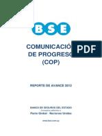 Comunicacion de Progreso 2012 - BSE
