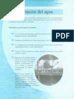 Articulo 2 Contaminacion Del Agua