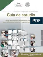 Guia_EXAIN-PRIMIN.pdf