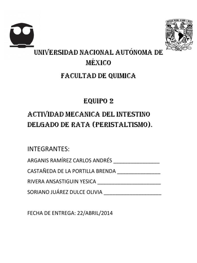 Actividad Mecanica Del Intestino Delgado de Rata (Peristaltismo)