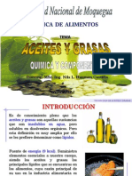 Aceites Final