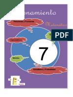 Portadas de Matematica 2013