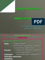 Semiología Del Aparato Genital Masculino..ppt