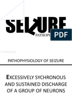 Pathophysiology of Seizure