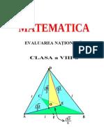 a8 Teorie Evaluare Naţională2014