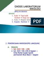 Clinical Skill Jamur