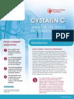 Plugin CystatinC
