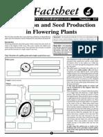 117 - Fertilisation and Seed Production