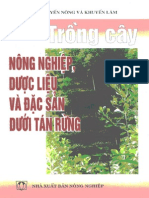 Trong Cay Duoi Tan Rung-VRS