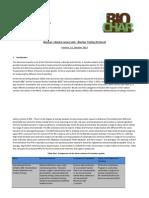 Bio Char Testing Protocol