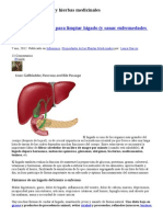 Hierbas Medicinales Para Limpiar Hígado