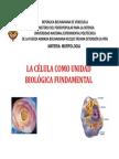 1.2. Analizar La Importancia de La Célula Como Unidad Biológica