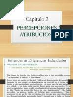 Percpeciones y Atributos