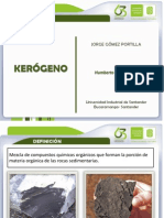 Expo Kerogeno
