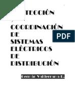Libro_de_Protecciones_(Versi+â-¦n_Preliminar)[1]