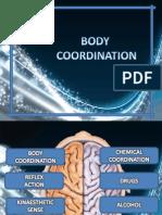 C2 Body Coordination