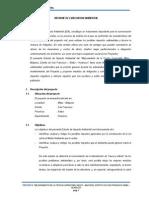 Informe Ambiental Milpo - Malpaso
