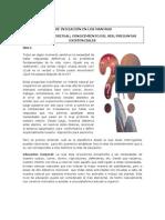 01 INTRODUCCION EN LA CULTURA VEDICA.pdf