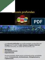 micosisprofundas-100511201336-phpapp02