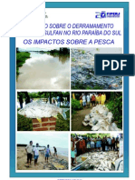 Relatório Acidente SERVATIS - DERRAMAMENTO DE 8 mil litros de AGROTÓXICO NO RIO PARAÍBA DO SUL-RJ / Capa Derramamento de Agrotóxico no Rio Paraiba do Sul - RJ / Capa Relatório FIPERJ